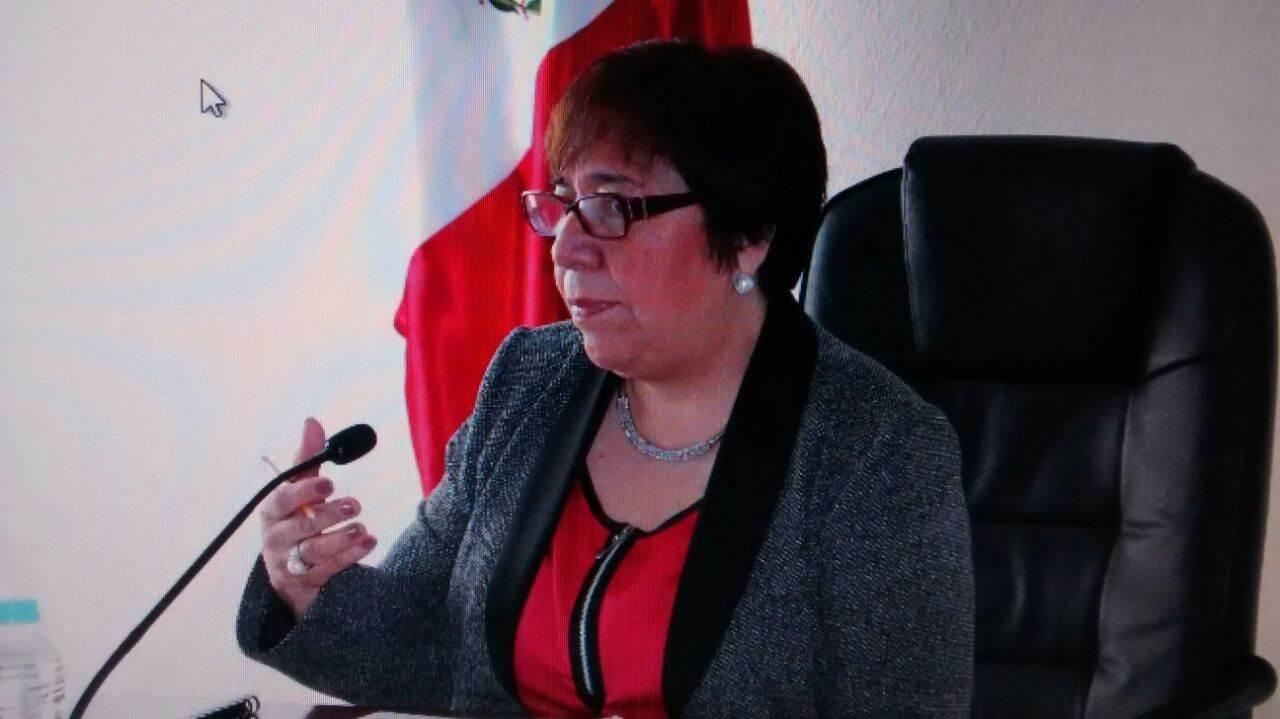 Carolina Viveros Garcia, presidenta del IEV