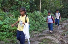 Pobreza, un factor para que se multipliquen casos de Tuberculosis en Texhuacan: CIOAC